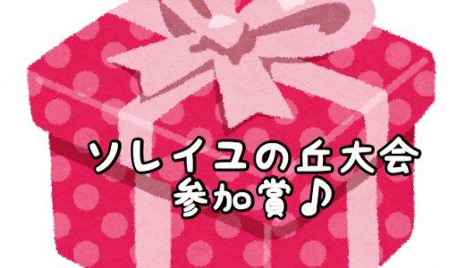 横須賀ソレイユの丘大会の参加プレゼント♪